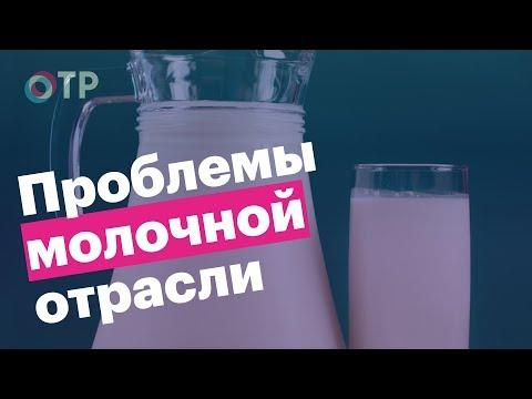 В связи с чем подорожает молоко?