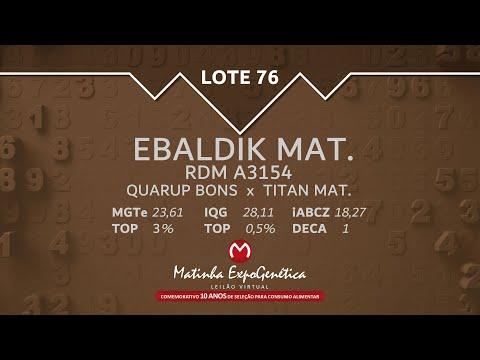 LOTE 76 MATINHA EXPOGENÉTICA 2021