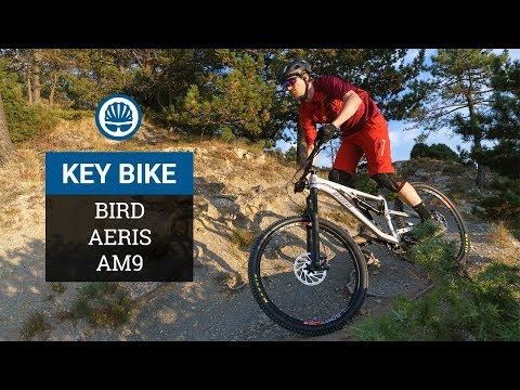 Bird Aeris AM9 - Key Bikes Of 2018