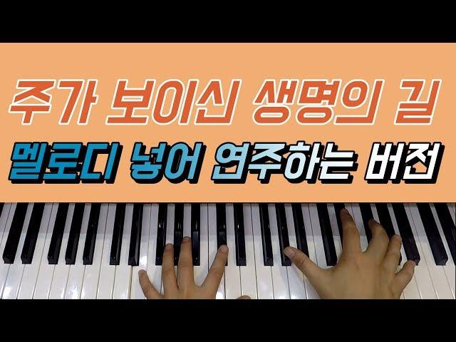 허림TV | 주가 보이신 생명의 길 피아노 | 2017.2.27일 라이브 강의 멜로디 버전