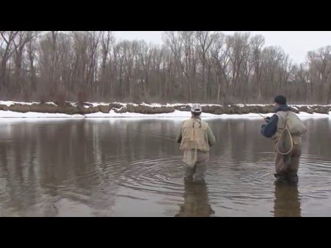 Dry Fly Adventures Episode 1: Midge Winter Dry Fly Fishing on the Snake River