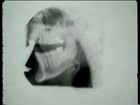 Ray Wheeler Clarinet & Tongue