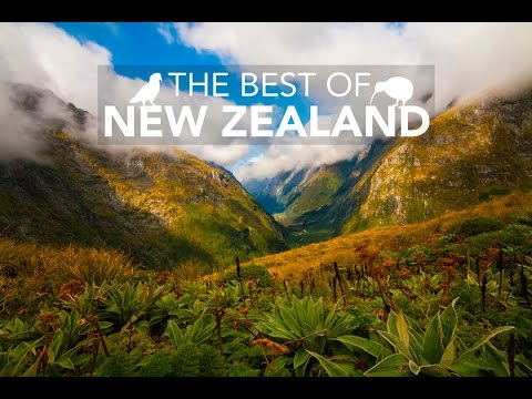 The best of New Zealand by Independent Couple