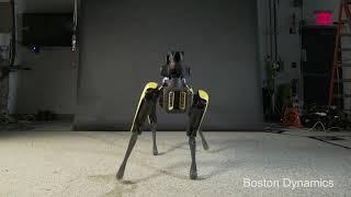 Robot dancing MEME Boston Dynamics