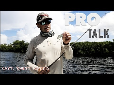 Pro Talk- MIRROLURE Catch 5: How/When/What