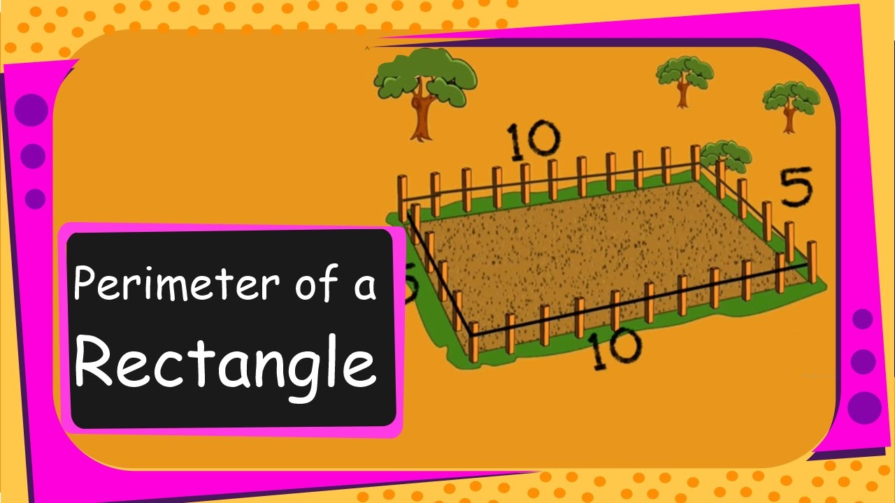 maths perimeter of a rectangle english youtube
