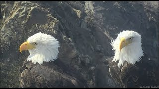 West End Catalina Eagles ~ Superman & Thunder ~Power Couple Up Close & Personal 9.22.18