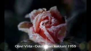 Olavi Virta - Odotathan kukkani