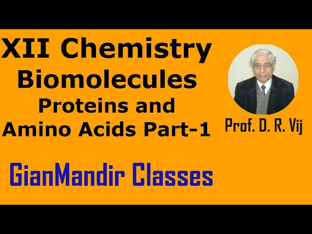 XII Chemistry | Biomolecules | Proteins and Amino Acids Part-1 by Gourav Sir