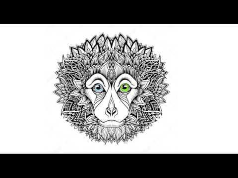 Skazi - Open Your Mind