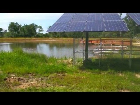 Video 1 - An Introduction To Our Northeast Texas Off Grid Project