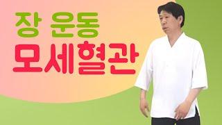 직장인 건강 요일별 수련 (월)ㅣ모세 혈관 강화/장 건…