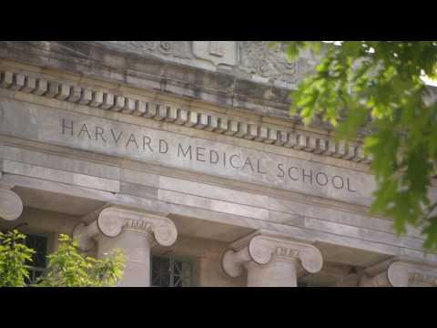 A History of Harvard Medical School Part IV: The Quad