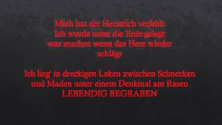 Dame - lebendig begraben (lyrics)