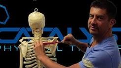 hqdefault - Back Pain Using Mouse
