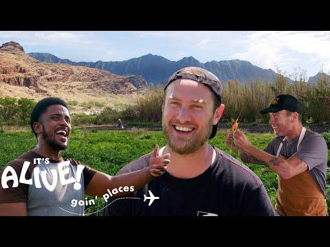 Brad Goes Farming in Hawaii   It's Alive: Goin' Places   Bon Apptit