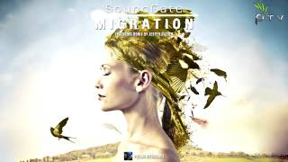 SoundGate - Migration (Original Mix)
