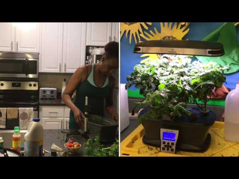 How to Clean an Aerogarden Ultra LED for Planting - Aerogarden Tomatoes Review