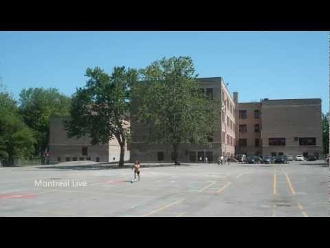 École le Plateau - Le Plateau-Mont-Royal - Montréal