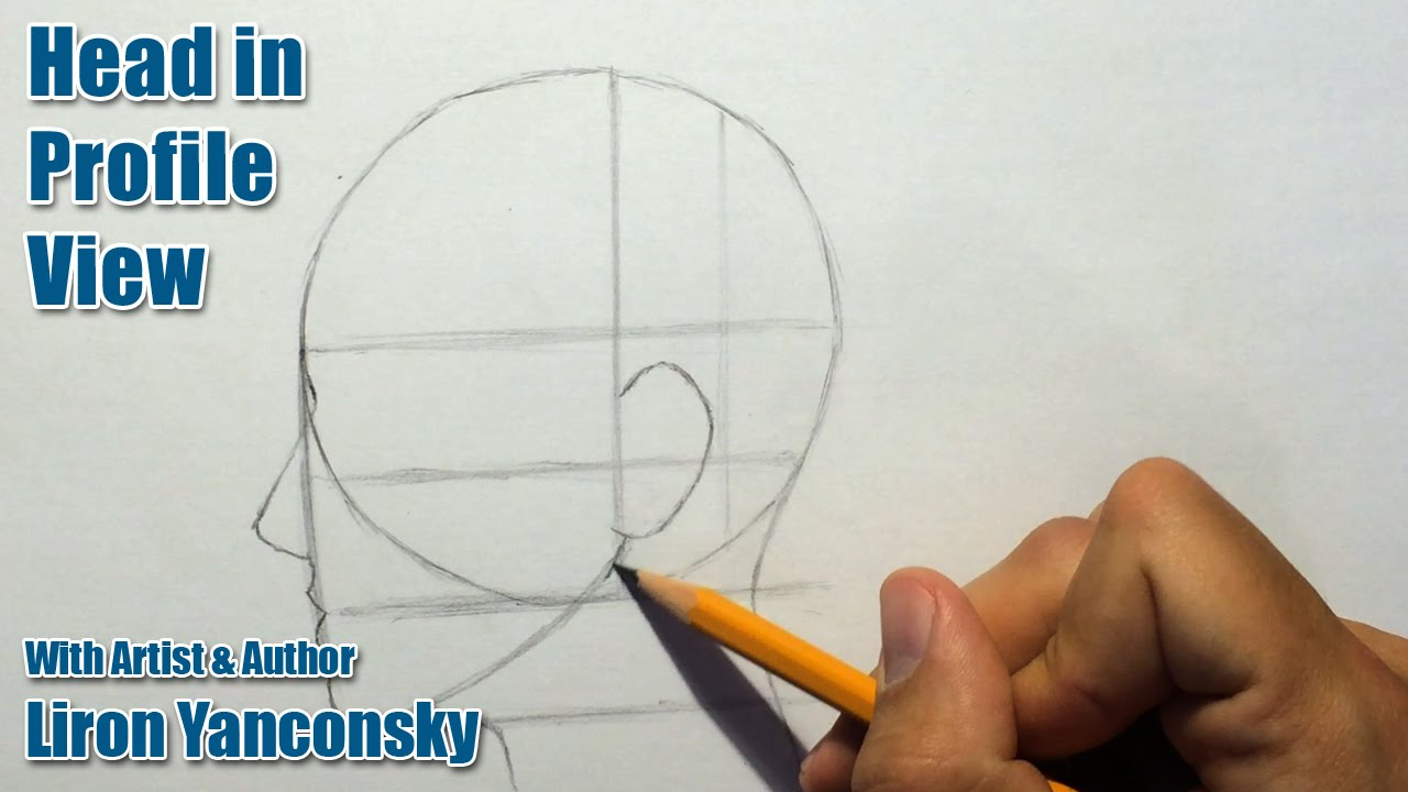 how to draw a head in profile view female youtube