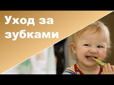 Первые зубы малыша   Первая зубная щетка ребенка
