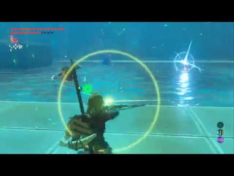 Breath of the Wild: Trial of the Sword - part 8 - Guardians of the Galantry