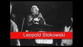 Leopold Stokowski: Wagner - Siegfried,