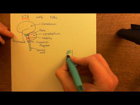 Drug Addiction Part 1