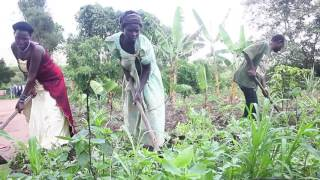 canaan demonstration farm
