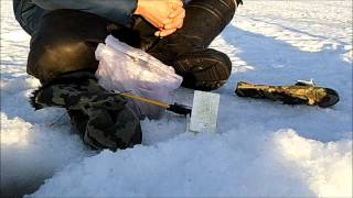 Фидер со льда. Первый опыт. Рыбалка в Самаре.