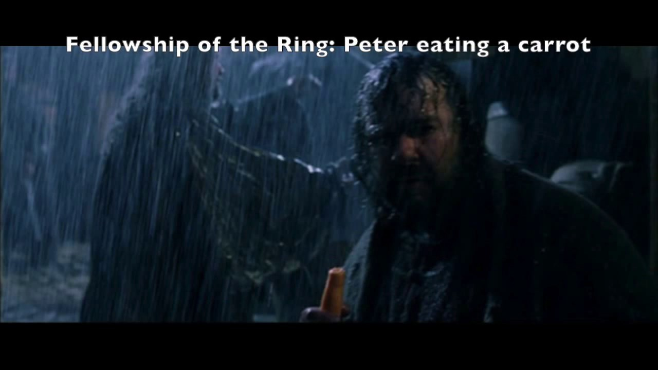 Lord Of The Rings Peter Jackson Cameo