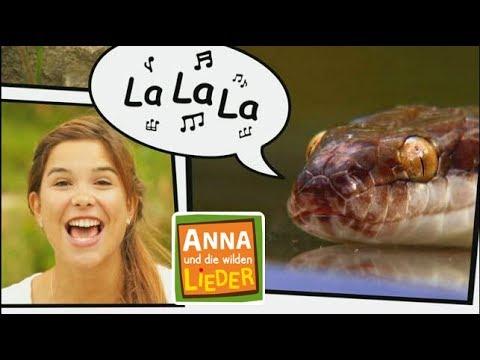Reptil Mit Stil Kinderlied Mit Tieren Anna Und Die Wilden Lieder Youtube