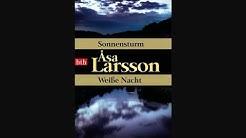 Sonnensturm Hörbuch von Åsa Larsson / Deutsch / Komplett