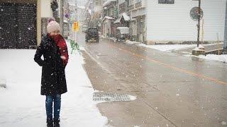 Nozawa Onsen, Tokyo and Odawara, Japan Winter 2016