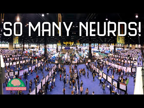#SfN16: The World's Largest Neuroscience Conference