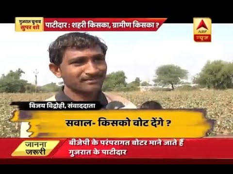 Gujarat Assembly Elections: ABP News' ground report from Patidars dominating Kheda village