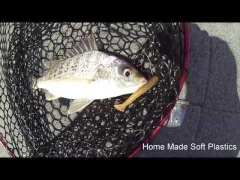 Fishing In Grunter Central - Hervey Bay