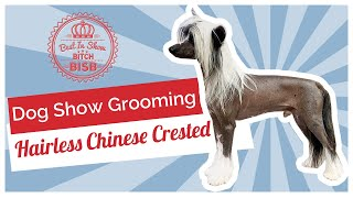 Dog Show Grooming: How To Groom a Hairless Chinese Crested
