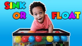 Sink or Float for Kids Fun Science Experiments you can do at home   Toys and Colors