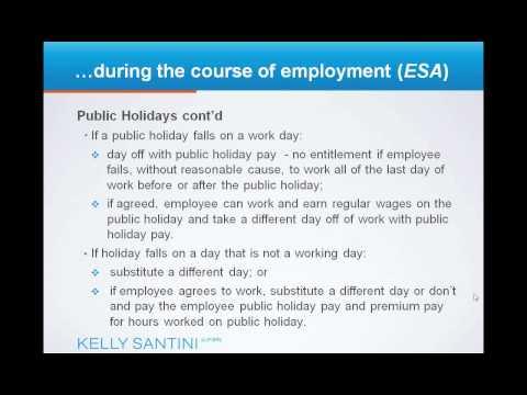 Employment Standards Act - Employment Law 101.wmv