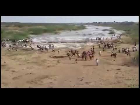 Kalavapalli River flows after 20 years of drought