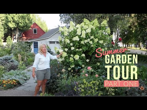 Summer Garden Tour Part 1 | Patio Garden | The Impatient Gardener