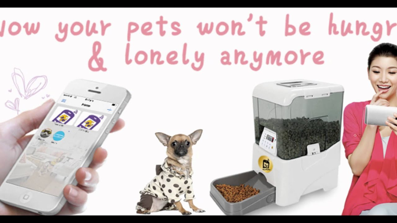 pp automatic fashion pet feeder remote wifi supplies dog petfun smart feeding control