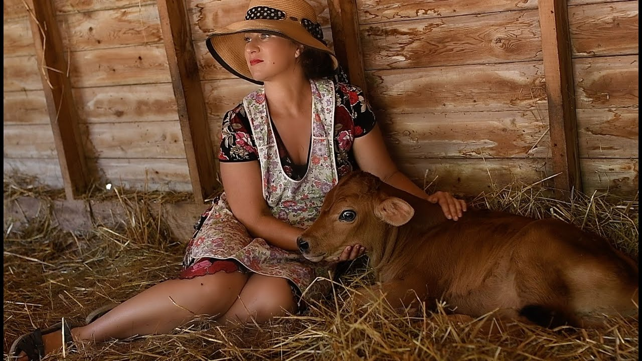 LET FREEDOM RING | We Got a Dairy Cow | The Birth of a Calf | Farming Heritage | Everyday Chateau