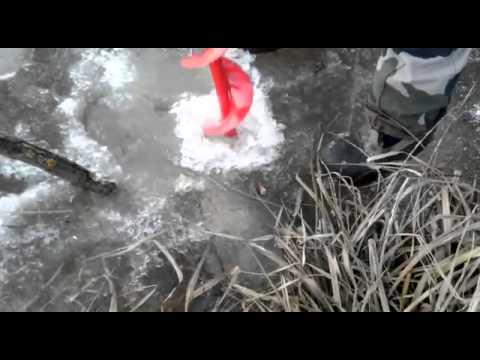 ловля толстолобика зимой+видео