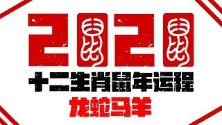 2020十二生肖庚子鼠年运程运势 | 龙蛇马羊运程 | 新加坡马来西亚香港台湾华人必看 |最好的生肖 | Ahmiao Tv