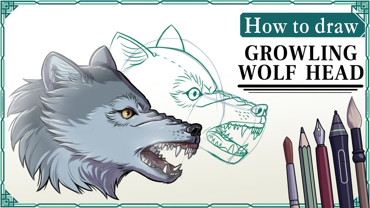 How To Draw A Wolf Head (growling)  Mink's Tutorials