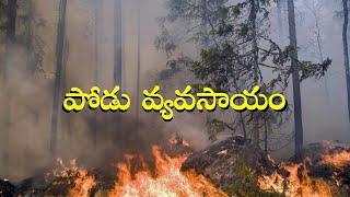 పోడు వ్యవసాయం / Shifting Agriculture or Slash and Burn Agriculture in telugu👌