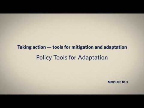 10.3 Policy Tools for Adaption