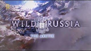 Vahşi Rusya : Kutuplar  (Belgesel)